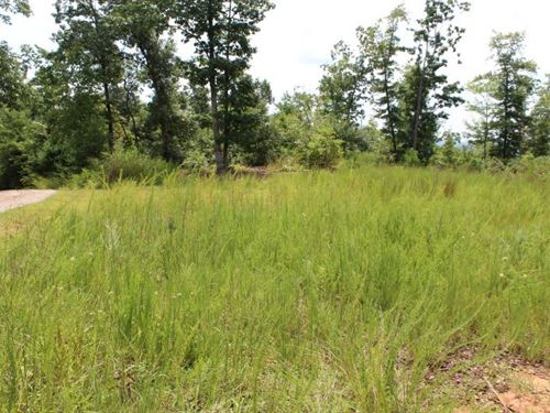 6.75 Acres Land Patrick County : Stuart : Patrick County : Virginia