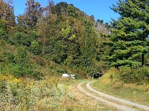 Commercial Land Swords Creek, VA : Swords Creek : Russell County : Virginia