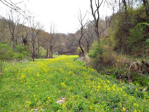 Nice Acreage Just Outside Town : Tazewell : Virginia