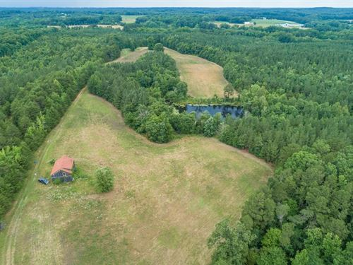 110 Acres Farmland In Southern VA : Skipwith : Mecklenburg County : Virginia