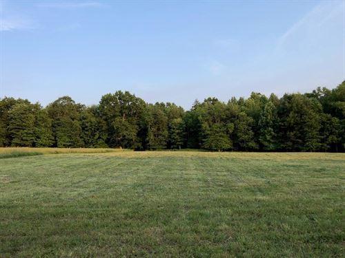 Farm Land With Water in Floyd VA : Willis : Floyd County : Virginia