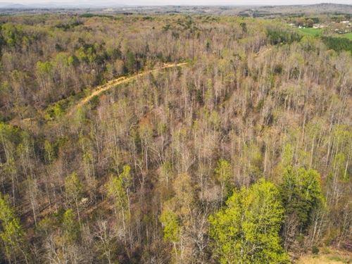 Land in Franklin County VA For Sale : Wirtz : Franklin County : Virginia