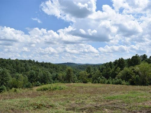 Large Acreage Carroll County VA : Woodlawn : Carroll County : Virginia
