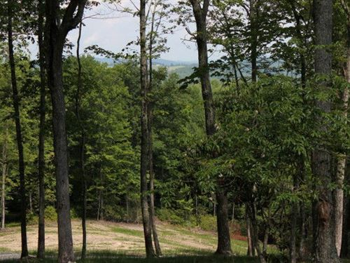 5 Elevated Acres Good Topography : Independence : Grayson County : Virginia