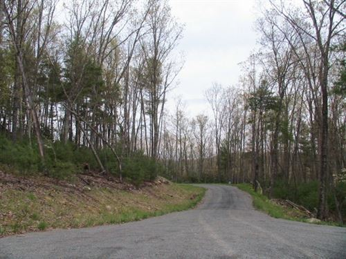 Wooded Acreage For Sale : Independence : Grayson County : Virginia
