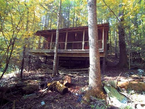 Secluded Mountain Hideaway Virginia : Independence : Grayson County : Virginia