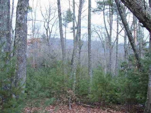 Homesite For Sale In Virginia : Independence : Grayson County : Virginia