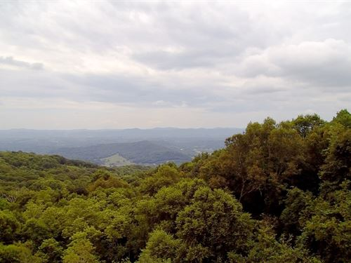 11.668 Acres That Offers Security : Independence : Grayson County : Virginia