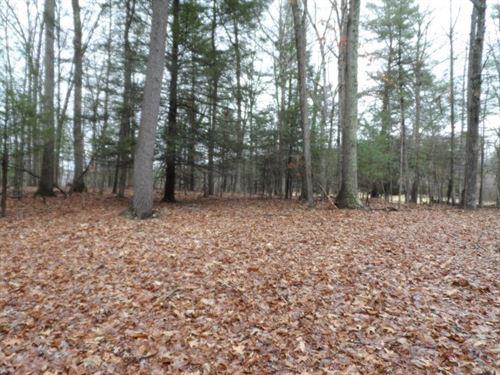 Land For Sale in Morgan County, WV : Berkeley Springs : Morgan County : West Virginia