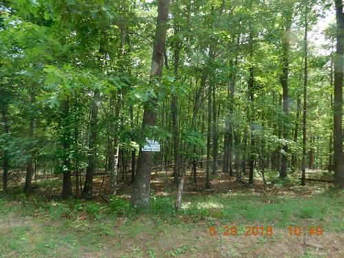 2.8 Acres in Berkeley Springs, WV : Berkeley Springs : Morgan County : West Virginia