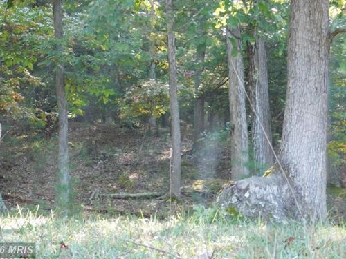 Land For Sale, Augusta, WV : Augusta : Hampshire County : West Virginia