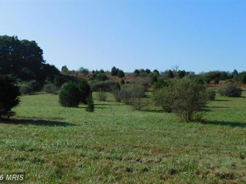 Land For Sale Augusta, WV : Augusta : Hampshire County : West Virginia