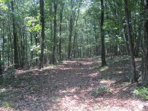 24+Acres in Augusta, WV : Augusta : Hampshire County : West Virginia