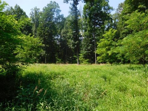 16.36 Acres in Capon Bridge, WV : Capon Bridge : Hampshire County : West Virginia