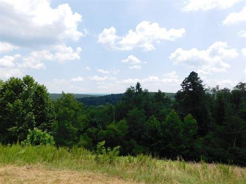 Land Capon Bridge, Wv, 54+ Acres : Capon Bridge : Hampshire County : West Virginia