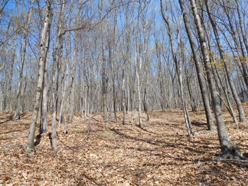 Land For Sale in Delray, WV : Delray : Hampshire County : West Virginia