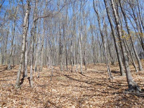 2.58 Acres in Delray, WV : Delray : Hampshire County : West Virginia