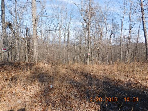 9.56 Acres in Gerrardstown, WV : Gerrardstown : Berkeley County : West Virginia