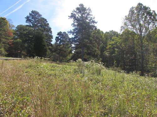 West Virginia Acreage With Homesite : Harrisville : Ritchie County : West Virginia