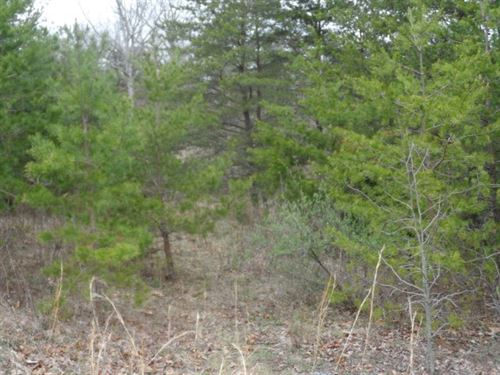 Land For Sale in Hedgesville, WV : Hedgesville : Berkeley County : West Virginia