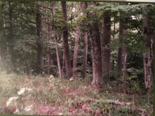 100 Acres, Woods, Meadows, Pasture : Hurricane : Mason County : West Virginia