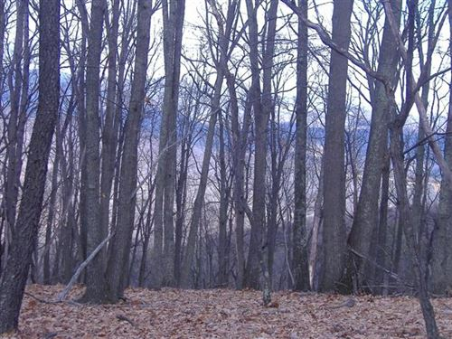 1.62 Acre Lot In Sleepy Knolls : Shanks : Hampshire County : West Virginia