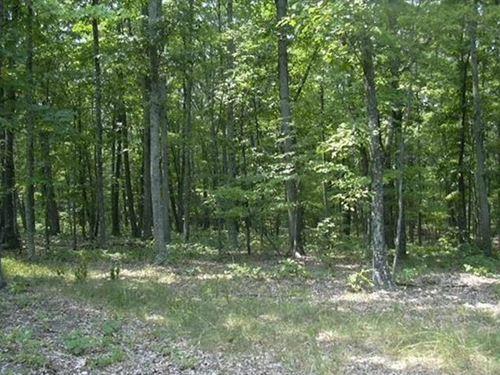 1.46 Acre Lot in Sleepy Knolls : Shanks : Hampshire County : West Virginia