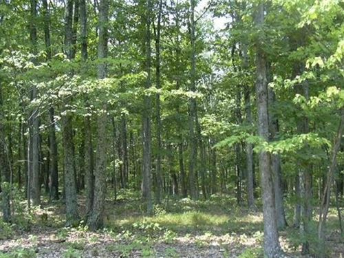 1.01 Acre Lot in Sleepy Knolls : Shanks : Hampshire County : West Virginia