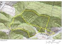 Wooded West Virginia Acreage : Shirley : Tyler County : West Virginia