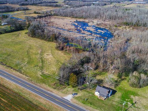 Hunting Land Morgan County AL : Danville : Morgan County : Alabama