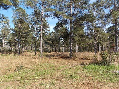 New Home Lot.45 Acre Hartford, Al : Hartford : Geneva County : Alabama