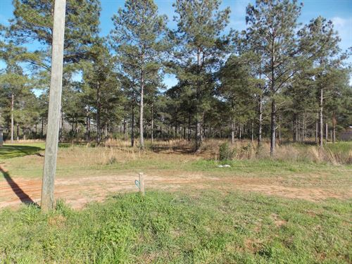 New Home.45 Acre Lot Hartford : Hartford : Geneva County : Alabama