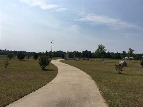 2 Acres Set Up Your New Home : Samson : Geneva County : Alabama