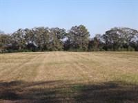 Cropland Creek Houston County, AL : Shorterville : Henry County : Alabama