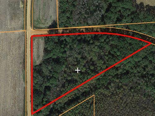 6 Acres For Sale Malvern, Alabama : Slocomb : Geneva County : Alabama