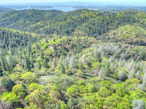 Mountainous 63 Acres Land Above : Berry Creek : Butte County : California