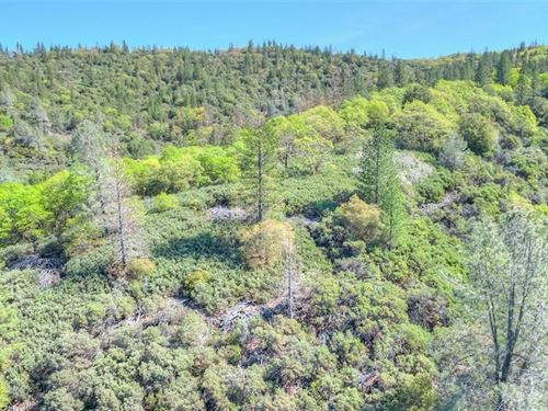 Lake View 128 Acres Land Fronting : Oroville : Butte County : California