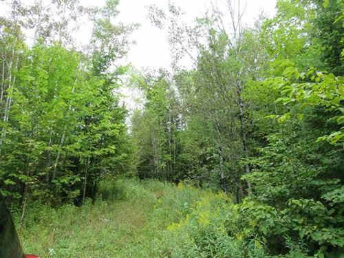 5569 State Highway M38 Mls 1111045 : Mass City : Ontonagon County : Michigan
