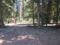 Cal Pines Hill Unit 3 Parcel : Alturas : Modoc County : California