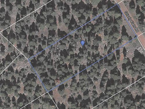 Recreational Property NE California : Alturas : Modoc County : California