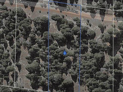 Modoc County Land For Sale : Alturas : Modoc County : California