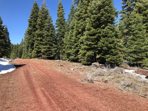 Land in Northern California : Alturas : Modoc County : California