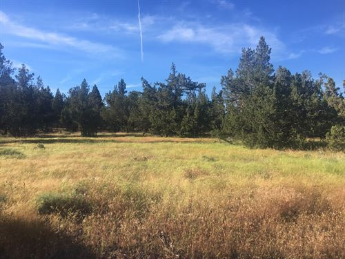 2.94 Acres Alturas, Modoc County : Alturas : Modoc County : California