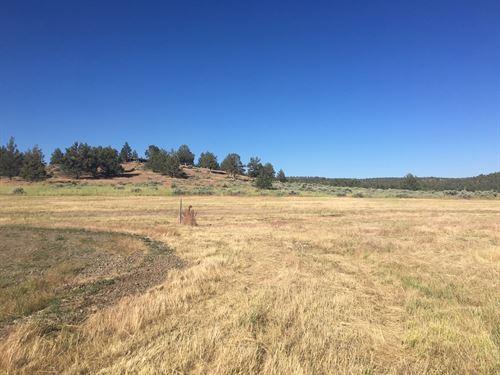 Land, N, Calif, Modoc County : Alturas : Modoc County : California