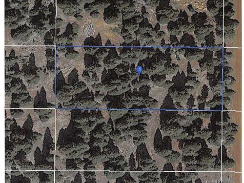 Land Alturas, Modoc County : Alturas : Modoc County : California