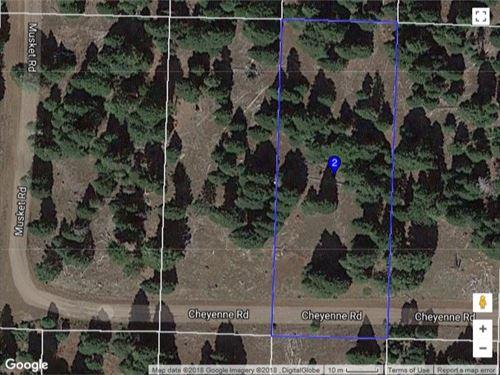 4 Lots Modoc County, Northeastern : Alturas : Modoc County : California