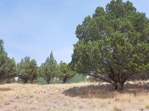 1.62 Acres : Alturas : Modoc County : California