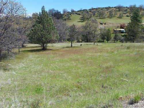 Northern CA Siskiyou County Land : Hornbrook : Siskiyou County : California