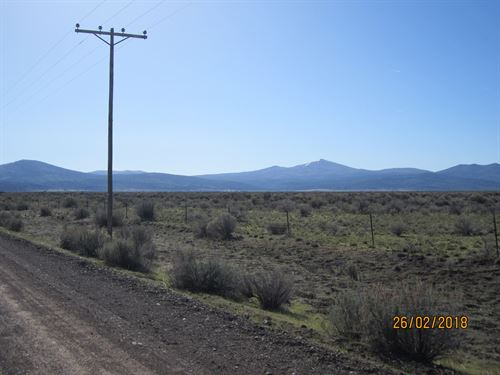 19.81Acre Vacant Land Northern : Madeline : Lassen County : California