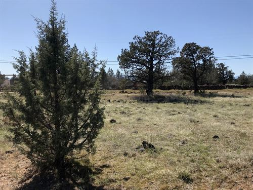 2.5 Acres Big Springs, Northern : Montague : Siskiyou County : California